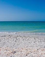 beach_lft